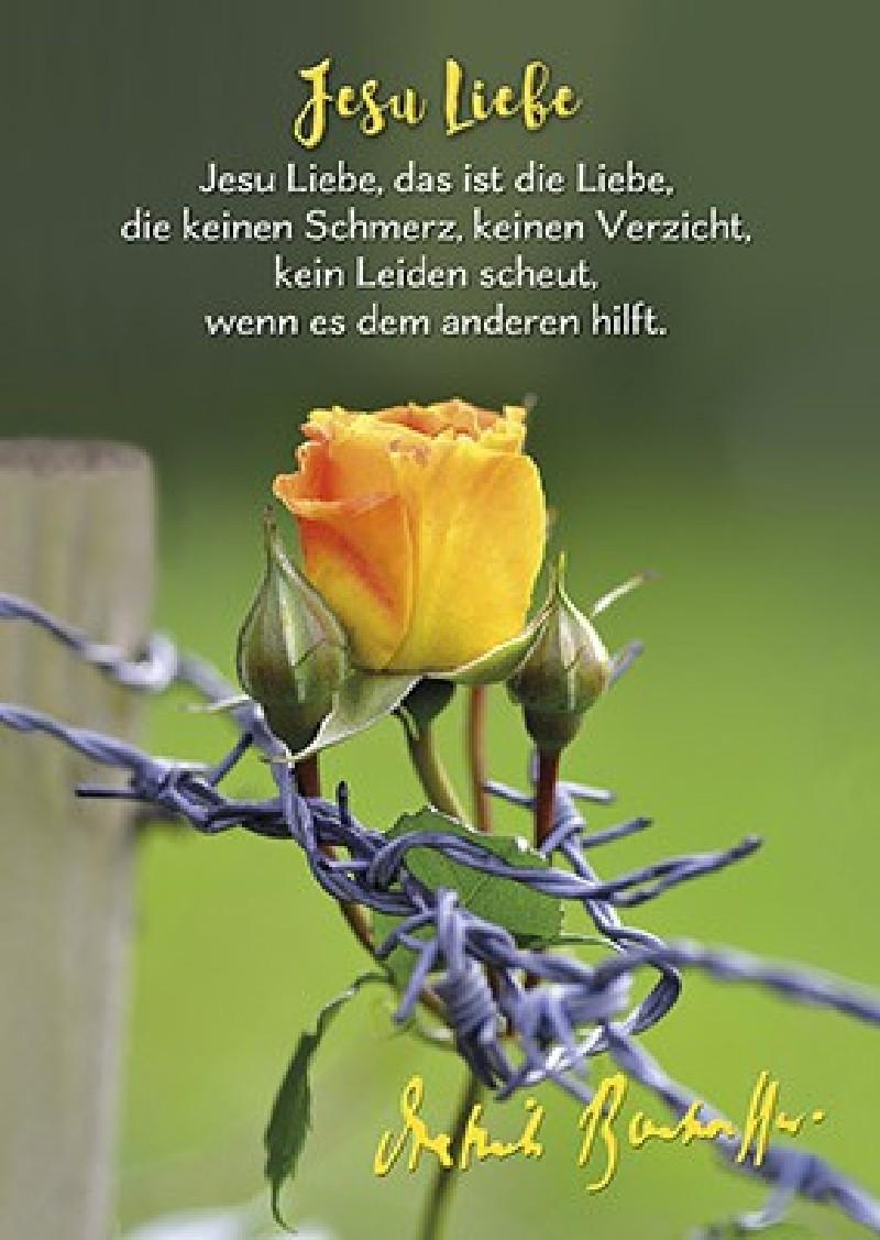 Postkarten: Jesu Liebe, 4 Stück
